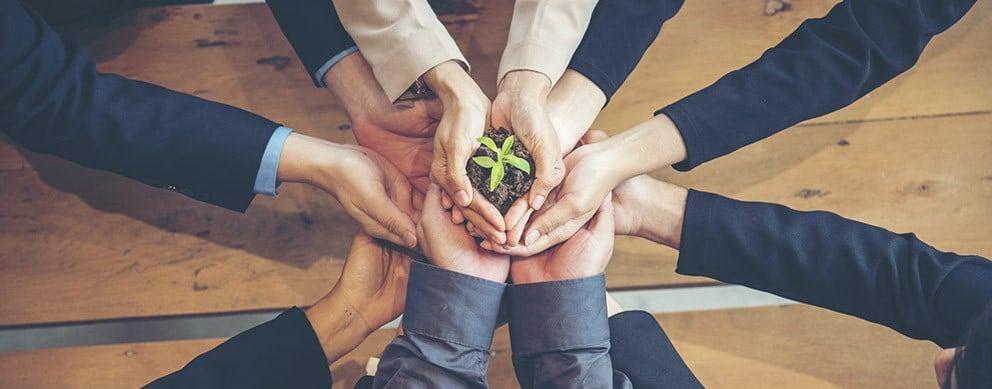 Mehrere Hände strecken sich in die gemeinsame Mitte und halten zusammen einen kleinen Erdhaufen mit einer Pflanze